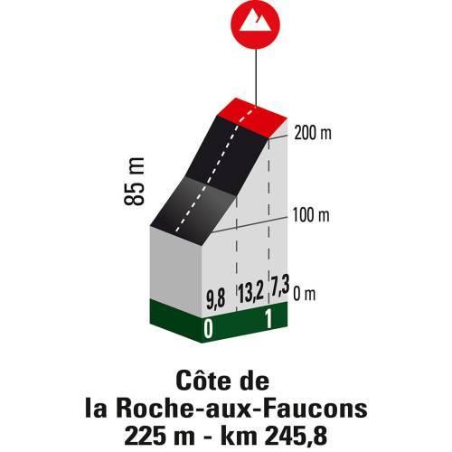 Top moments: classiche delle Ardenne. Pendenza media Cote de la Roche-aux-Faucons per settore