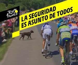 Tour de France 2019 - Seguridad de los ciclistas