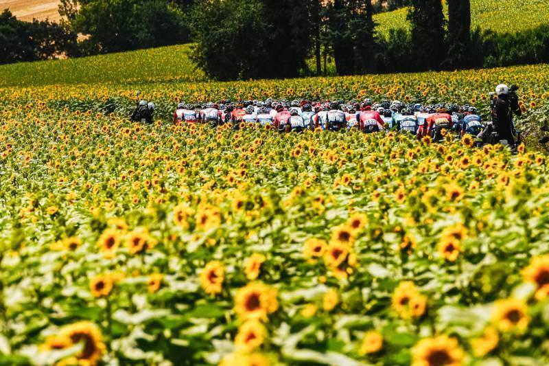 10/07/2021 – Tour de France 2021 – Etape 14 – Carcassonne / Quillan (183,7 km) -