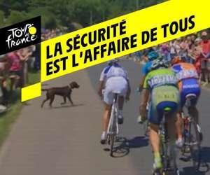 Tour de France 2019 -  La sécurité des coureurs
