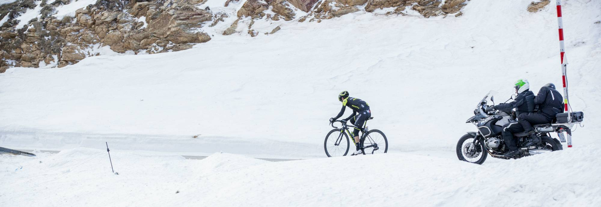 Header: LLANARS (Vall de Camprodon) > LA MOLINA (Alp)