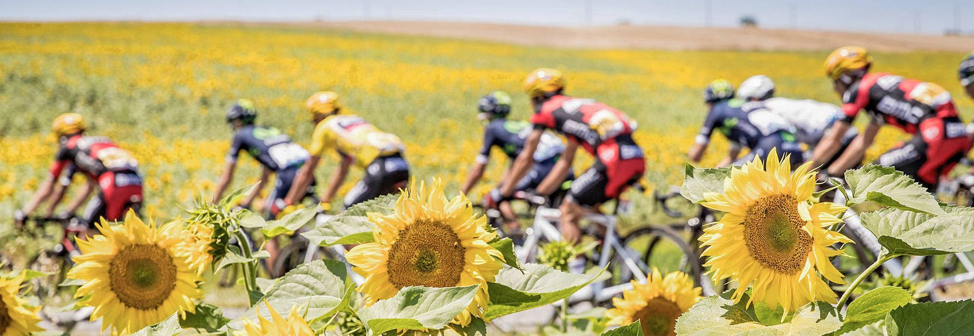 Header: Cyclisme
